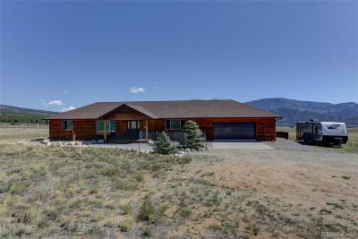 Buena Vista Single Family Home Under Contract: 31400 Great Peaks Drive
