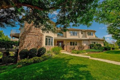 Highlands Ranch Single Family Home Under Contract: 291 Fairchild Drive