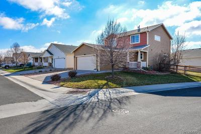 Fort Collins Single Family Home Active: 3803 Lochside Lane