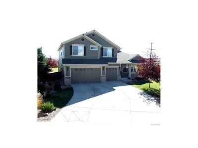 Castle Rock Single Family Home Active: 6842 Sulfur Court