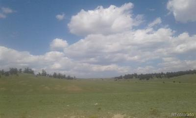 Hartsel CO Residential Lots & Land Active: $11,900