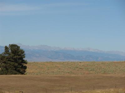 Douglas County Residential Lots & Land Active: 10557 Shadow Pines Road