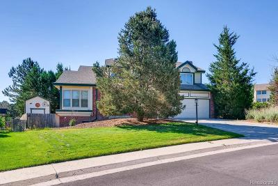 Parker CO Single Family Home Active: $495,000