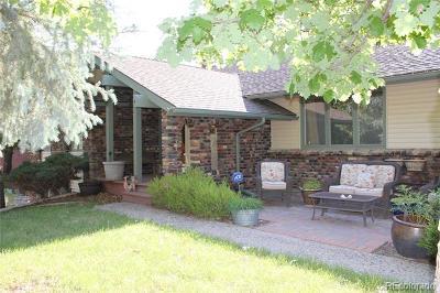 Douglas County Single Family Home Active: 7351 Windwood Way