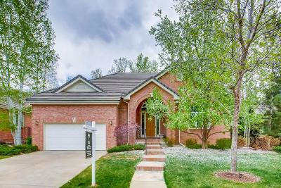 Greenwood Village Single Family Home Under Contract: 81 Silver Fox Drive