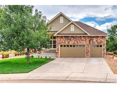 Mead Single Family Home Active: 16855 Howlett Place