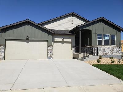 Firestone Single Family Home Active: 4595 Shore View Court