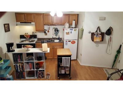 Denver Multi Family Home Active: 1285 Co Boulevard