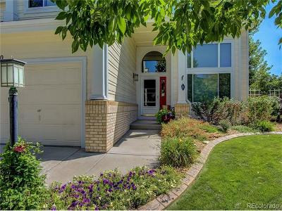 Parker Single Family Home Active: 16850 Amberstone Way