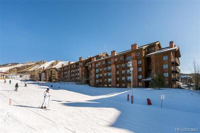 Steamboat Springs Condo/Townhouse Active: 2420 Ski Trail Lane #105