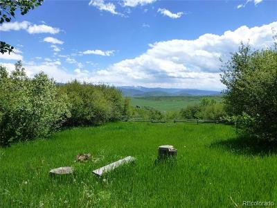 Steamboat Springs Residential Lots & Land Active: 50620 Semotan Drive