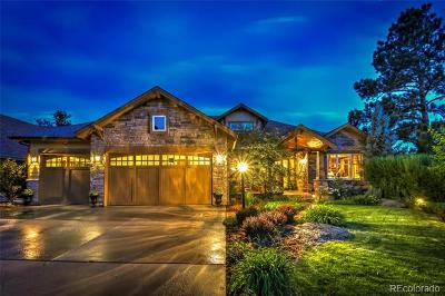 Castle Rock CO Single Family Home Active: $1,099,999