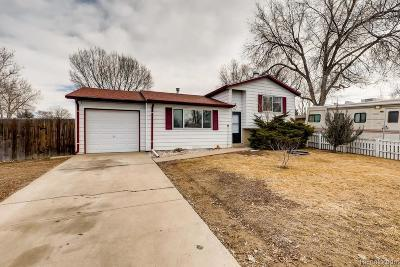 Longmont Single Family Home Under Contract: 734 Mount Evans Street