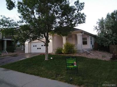 Thornton Single Family Home Active: 12568 Dexter Way