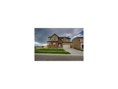 Erie Single Family Home Active: 956 Sundance Lane