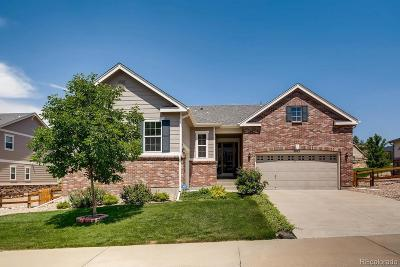 Plum Creek, Plum Creek Fairway, Plum Creek South Single Family Home Under Contract: 2875 McCracken Lane