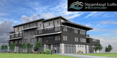 Steamboat Springs Income Active: 2507 Riverside Drive