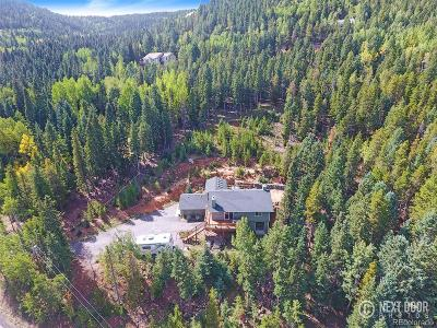 Conifer Single Family Home Active: 10389 Christopher Drive
