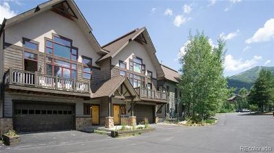 Condo/Townhouse Active: 1700 Alpine Vista Court #4