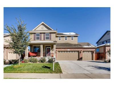 Aurora Single Family Home Active: 138 North Kellerman Street