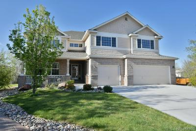 Adams County Single Family Home Active: 10617 Lowell Drive