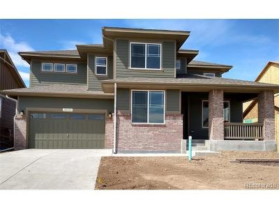 Parker Single Family Home Active: 20716 Scenic Park Drive