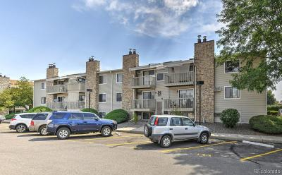Lakewood Condo/Townhouse Under Contract: 381 South Ames Street #C104