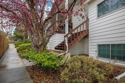 Condo/Townhouse Active: 8570 East Temple Drive