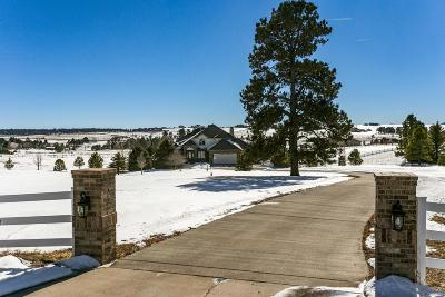 Elbert County Single Family Home Active: 34372 Stampede Circle