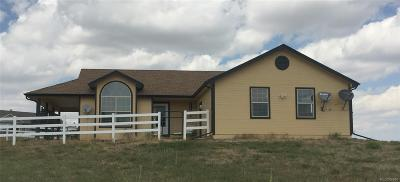 Kiowa Single Family Home Under Contract: 11875 Plainview Drive