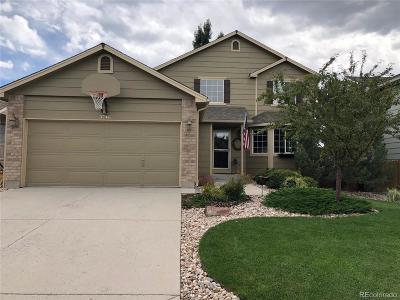 Castle Rock Single Family Home Under Contract: 3746 Black Feather Trail