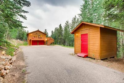 Conifer Single Family Home Active: 11395 Pauls Drive