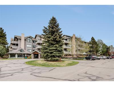 Evergreen Condo/Townhouse Under Contract: 31719 Rocky Village Drive #316