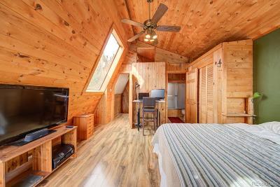 Evergreen Single Family Home Active: 362 Cedar Road