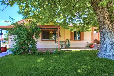 Denver Single Family Home Active: 52 South Decatur Street