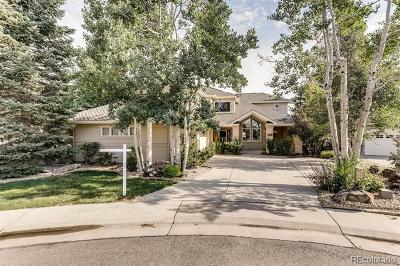 Indian Peaks, Indian Peaks Filing 14 Single Family Home Active: 586 Brainard Circle