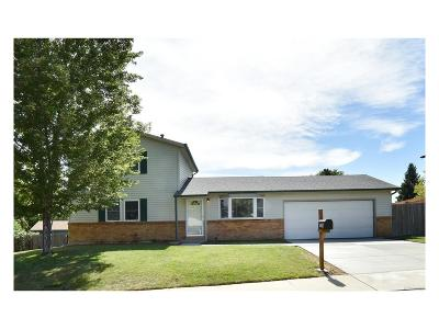 Arvada Single Family Home Active: 7558 Lamar Court