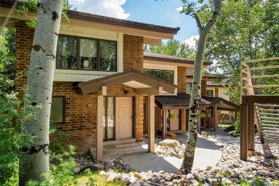 Steamboat Springs Condo/Townhouse Active: 2741 Burgess Creek Road #9