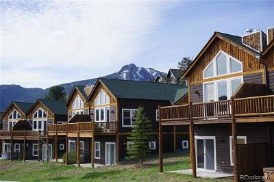 Estes Park Condo/Townhouse Active: 2525 Marys Lake Road #33