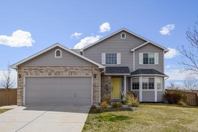 Castle Rock Single Family Home Active: 4869 Eckert Circle