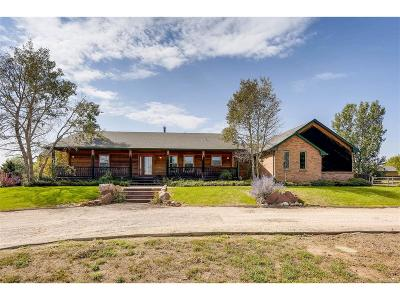 Adams County Single Family Home Active: 14350 East 134th Avenue