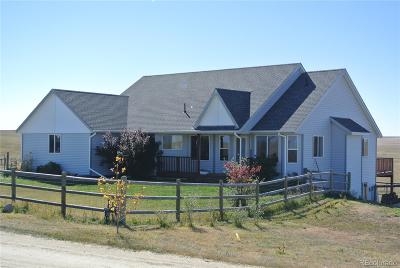 Elbert County Single Family Home Active: 27190 Private Road 139