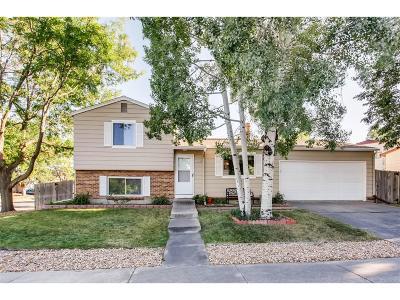 Aurora Single Family Home Active: 4810 South Richfield Circle