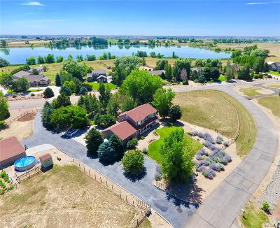 Mead Single Family Home Active: 260 Hunters Cove Drive