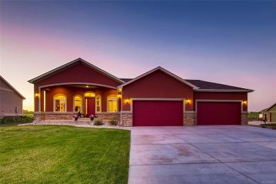 Brighton Single Family Home Active: 4691 Carmichael Court