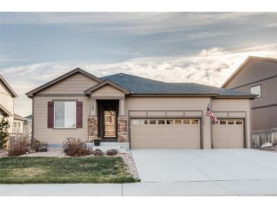 Castle Rock Single Family Home Active: 7509 Grady Circle