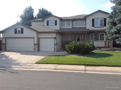 Highlands Ranch Single Family Home Active: 5719 Glenstone Drive