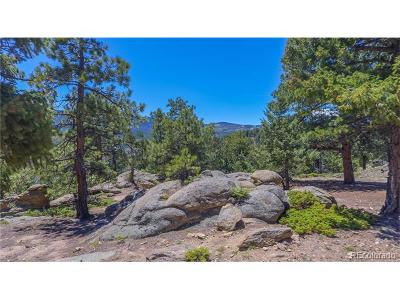Evergreen Residential Lots & Land Active: 32543 Lodge Pole Circle
