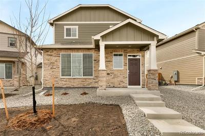 Parker Single Family Home Active: 6699 Longpark Drive