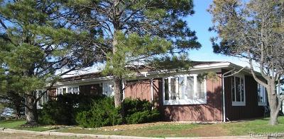 Bennett Single Family Home Active: 860 South Split Rock Road